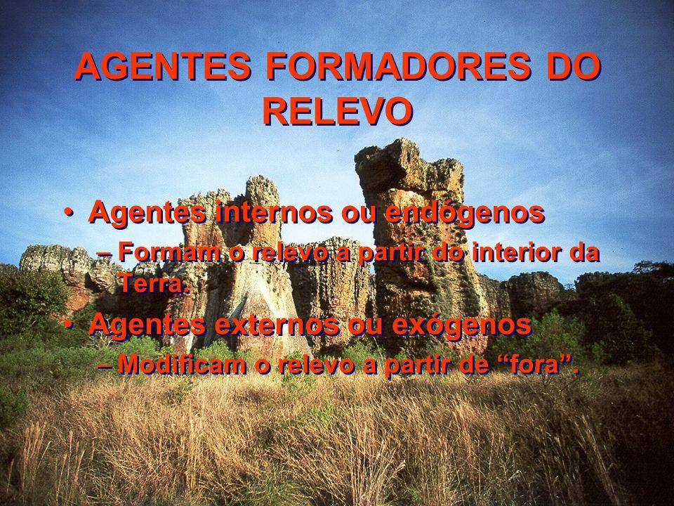 AGENTES FORMADORES DO RELEVO