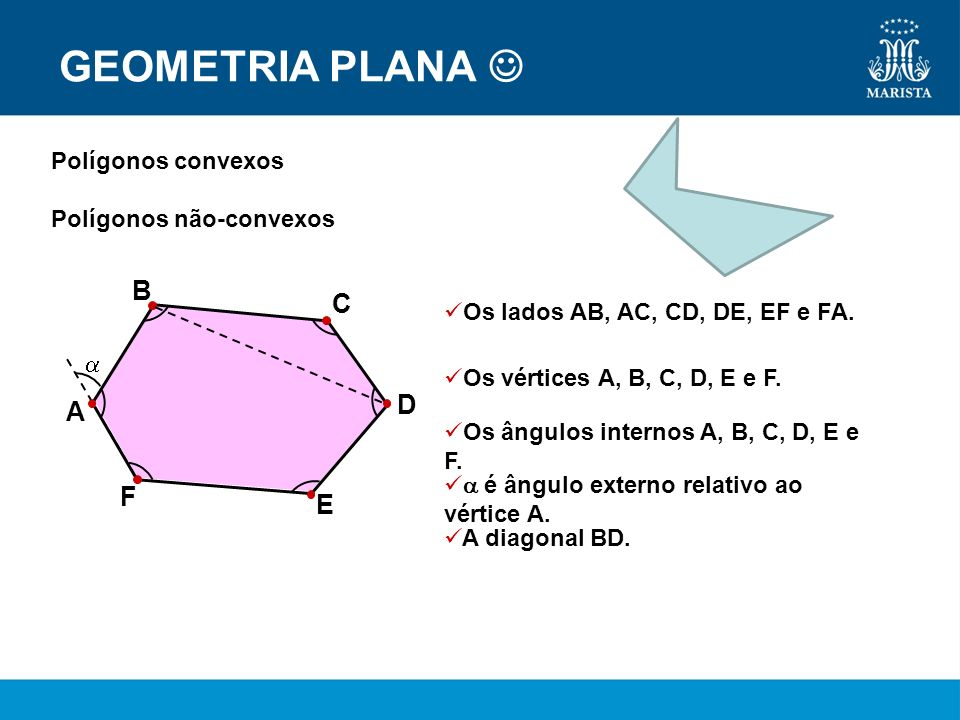 GEOMETRIA PLANA  B C D A F E Polígonos convexos