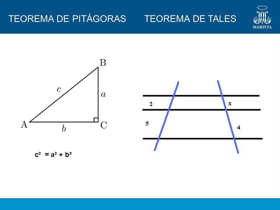 TEOREMA DE PITÁGORAS TEOREMA DE TALES