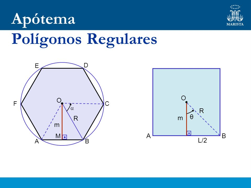 Apótema Polígonos Regulares E F D C B A O O  R R m θ m M A B L/2