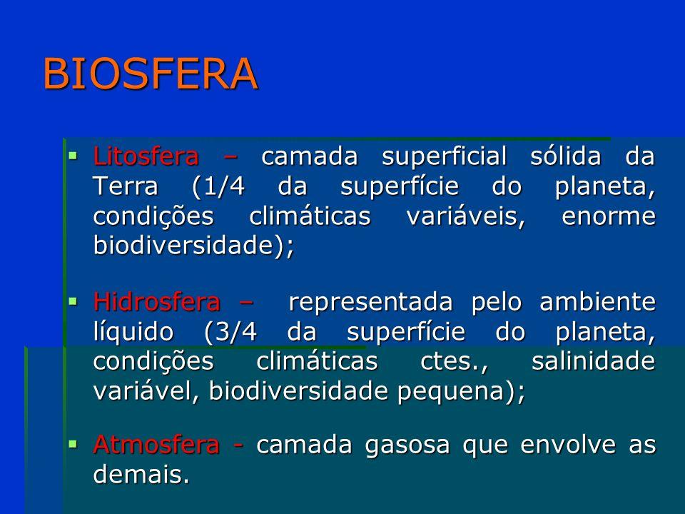 BIOSFERA Litosfera – camada superficial sólida da Terra (1/4 da superfície do planeta, condições climáticas variáveis, enorme biodiversidade);