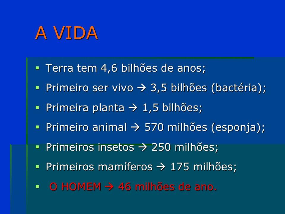 A VIDA Terra tem 4,6 bilhões de anos;