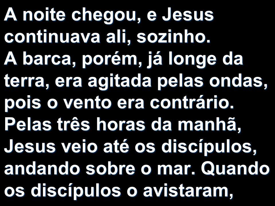 A noite chegou, e Jesus continuava ali, sozinho