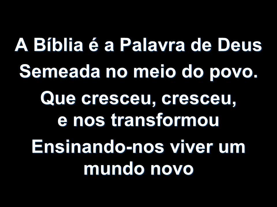 A Bíblia é a Palavra de Deus Semeada no meio do povo.