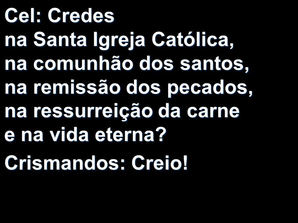 Cel: Credes na Santa Igreja Católica, na comunhão dos santos, na remissão dos pecados, na ressurreição da carne e na vida eterna