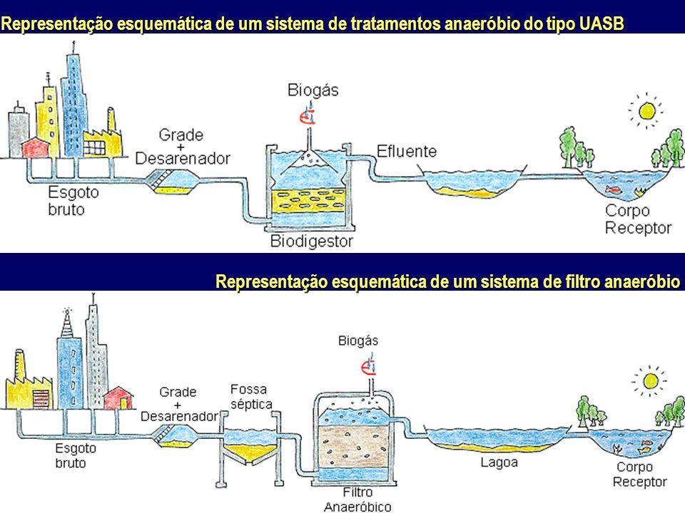 Representação esquemática de um sistema de tratamentos anaeróbio do tipo UASB