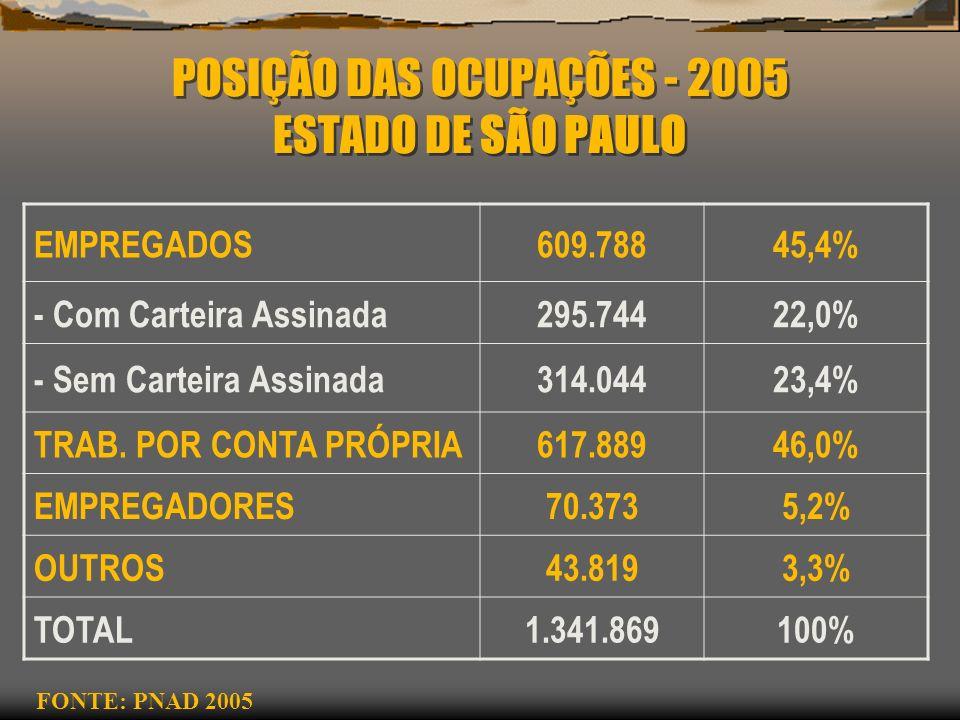 POSIÇÃO DAS OCUPAÇÕES - 2005 ESTADO DE SÃO PAULO