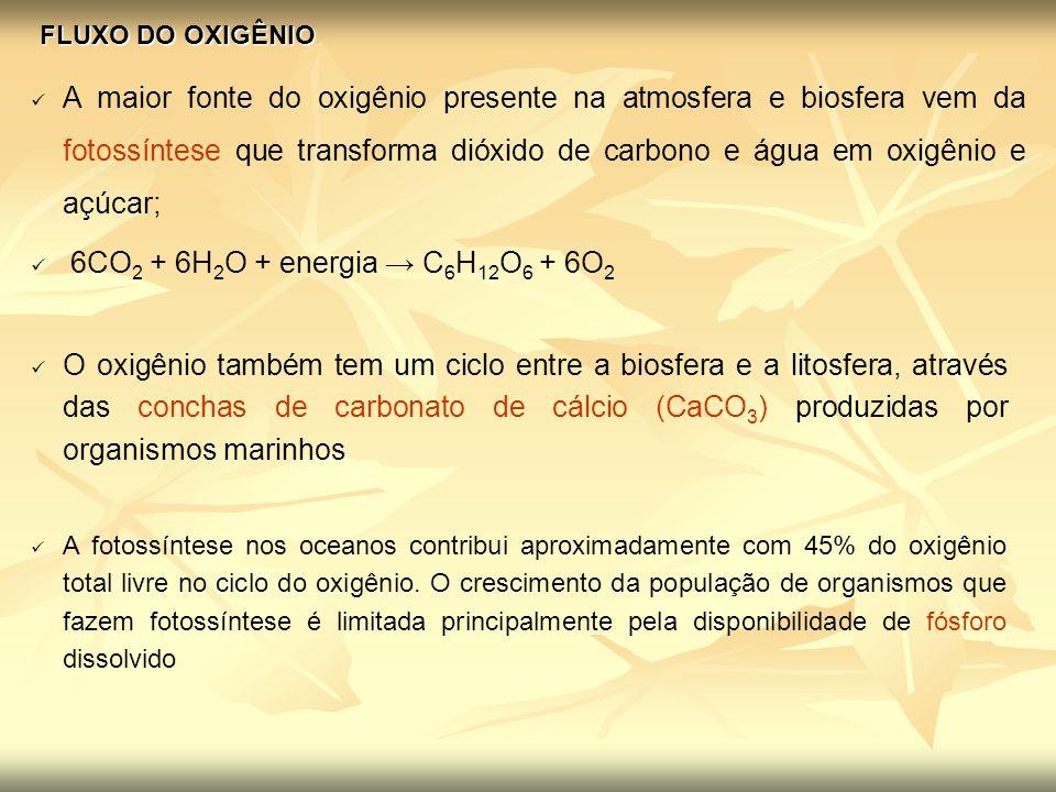 FLUXO DO OXIGÊNIO