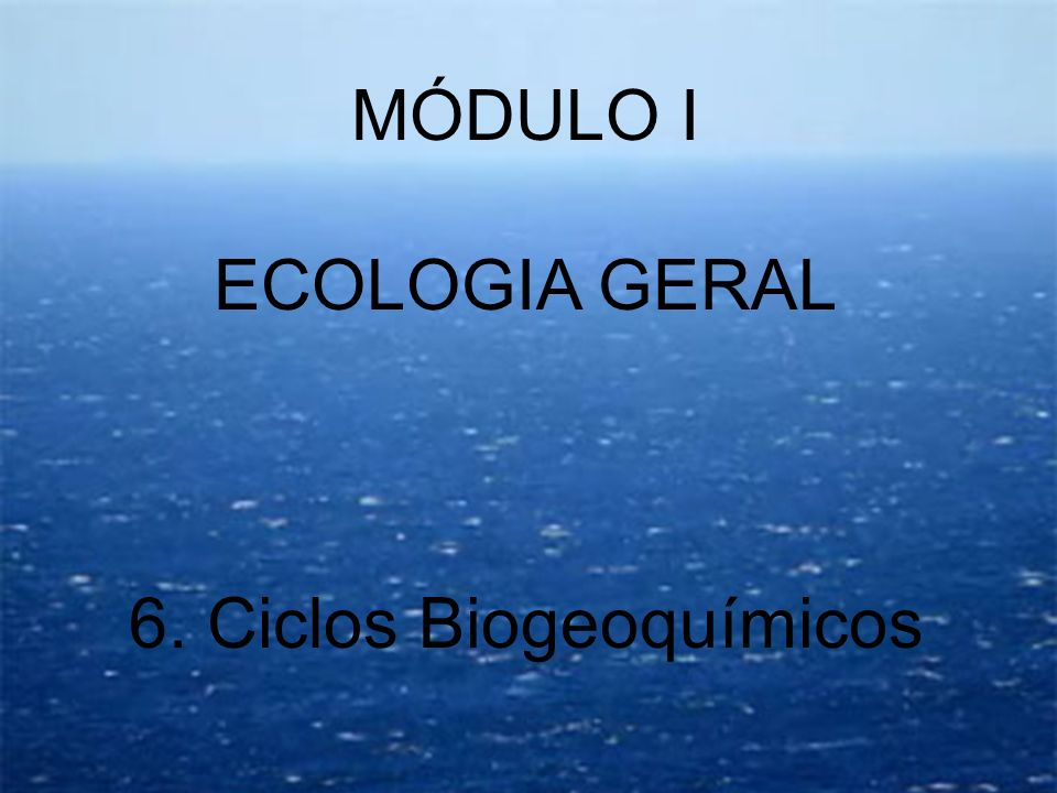 6. Ciclos Biogeoquímicos