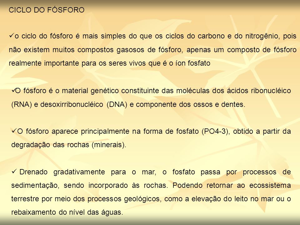CICLO DO FÓSFORO