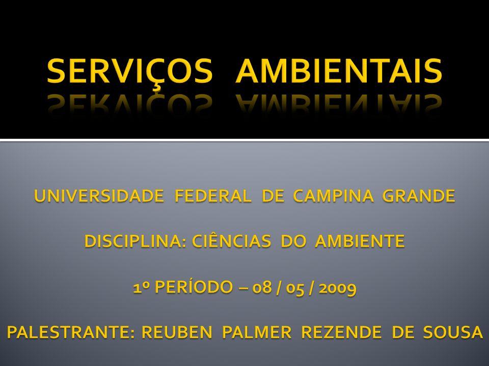 SERVIÇOS AMBIENTAIS UNIVERSIDADE FEDERAL DE CAMPINA GRANDE DISCIPLINA: CIÊNCIAS DO AMBIENTE 1º PERÍODO – 08 / 05 / 2009 PALESTRANTE: REUBEN PALMER REZENDE DE SOUSA
