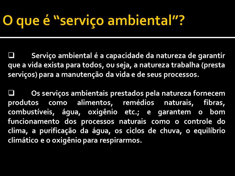 O que é serviço ambiental