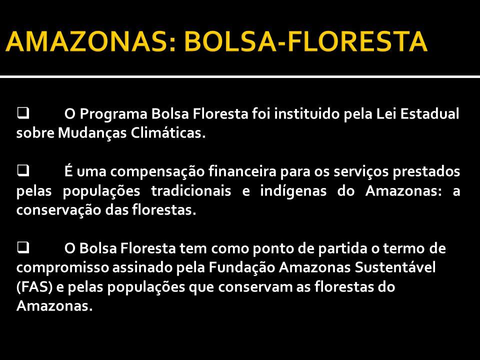 AMAZONAS: BOLSA-FLORESTA