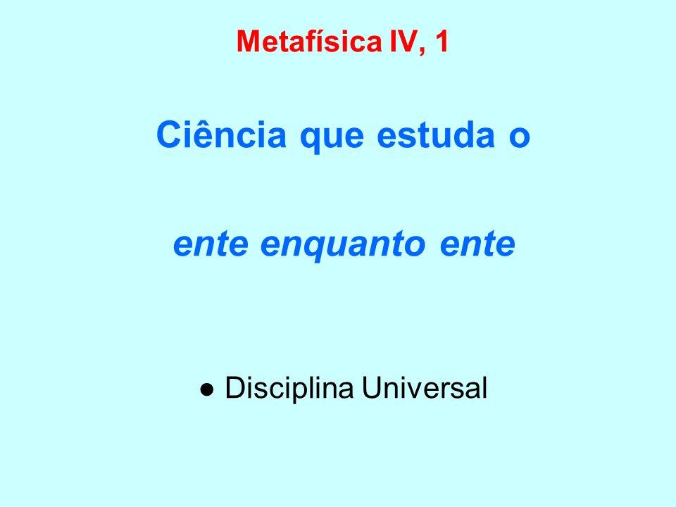 ● Disciplina Universal