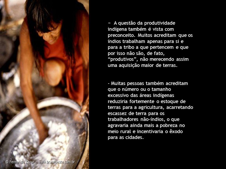 - A questão da produtividade indígena também é vista com preconceito