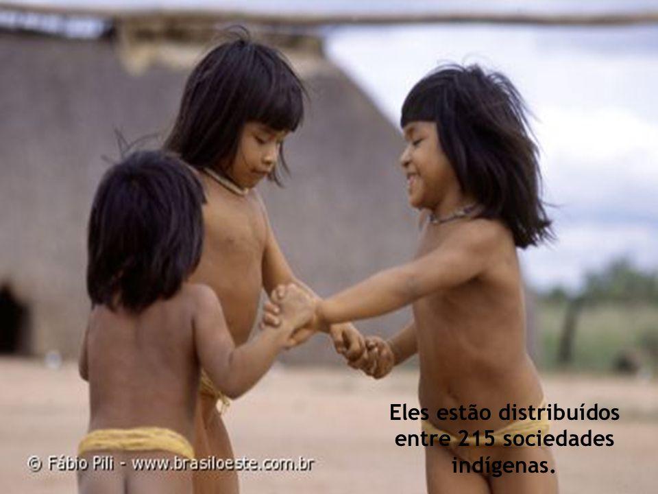 Eles estão distribuídos entre 215 sociedades indígenas.