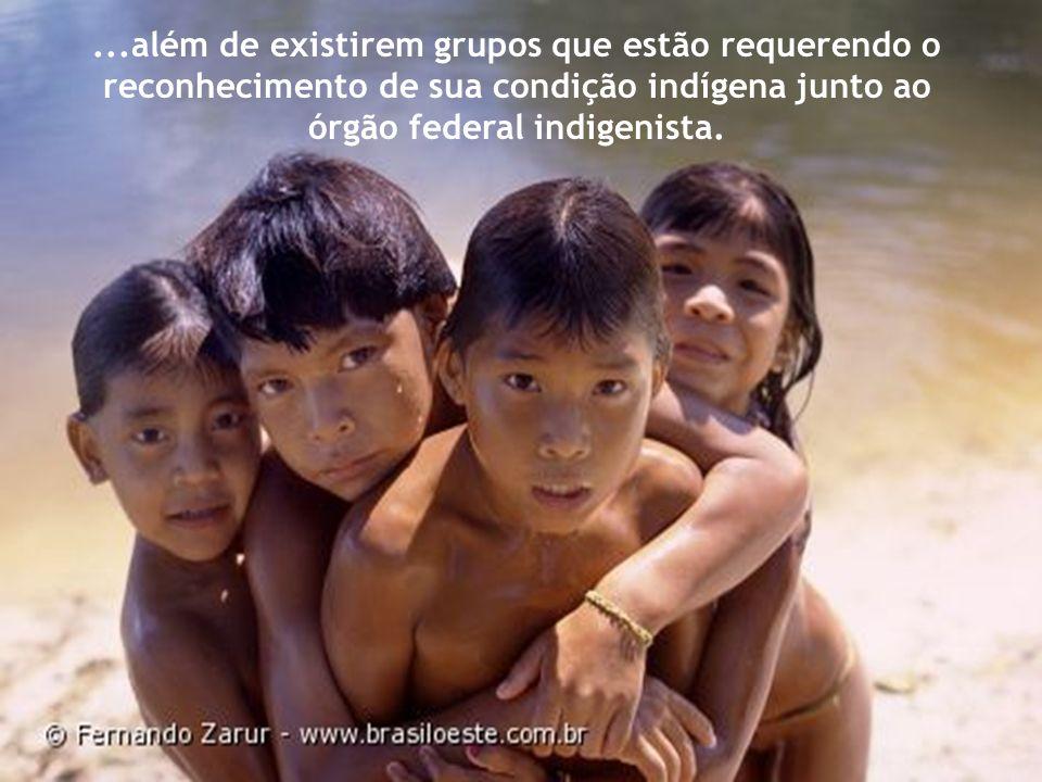 ...além de existirem grupos que estão requerendo o reconhecimento de sua condição indígena junto ao órgão federal indigenista.