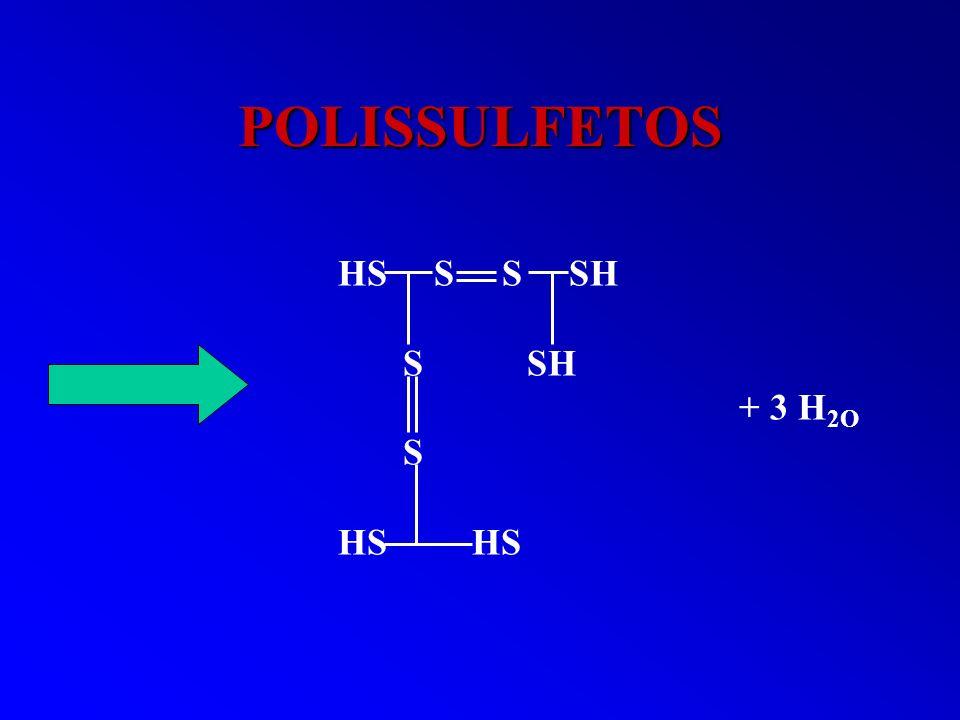POLISSULFETOS HS S S SH S SH + 3 H2O S HS HS