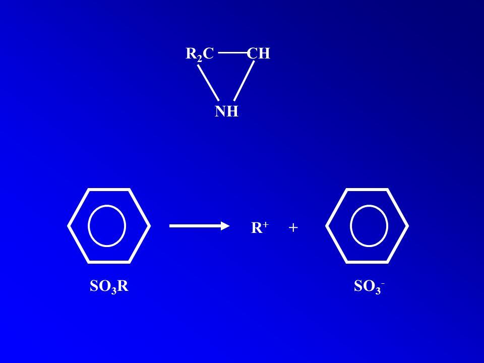 R2C CH NH R+ + SO3R SO3-