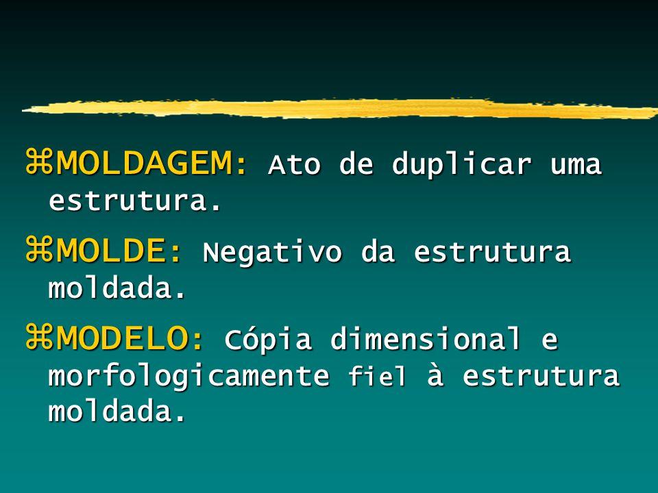 MOLDAGEM: Ato de duplicar uma estrutura.