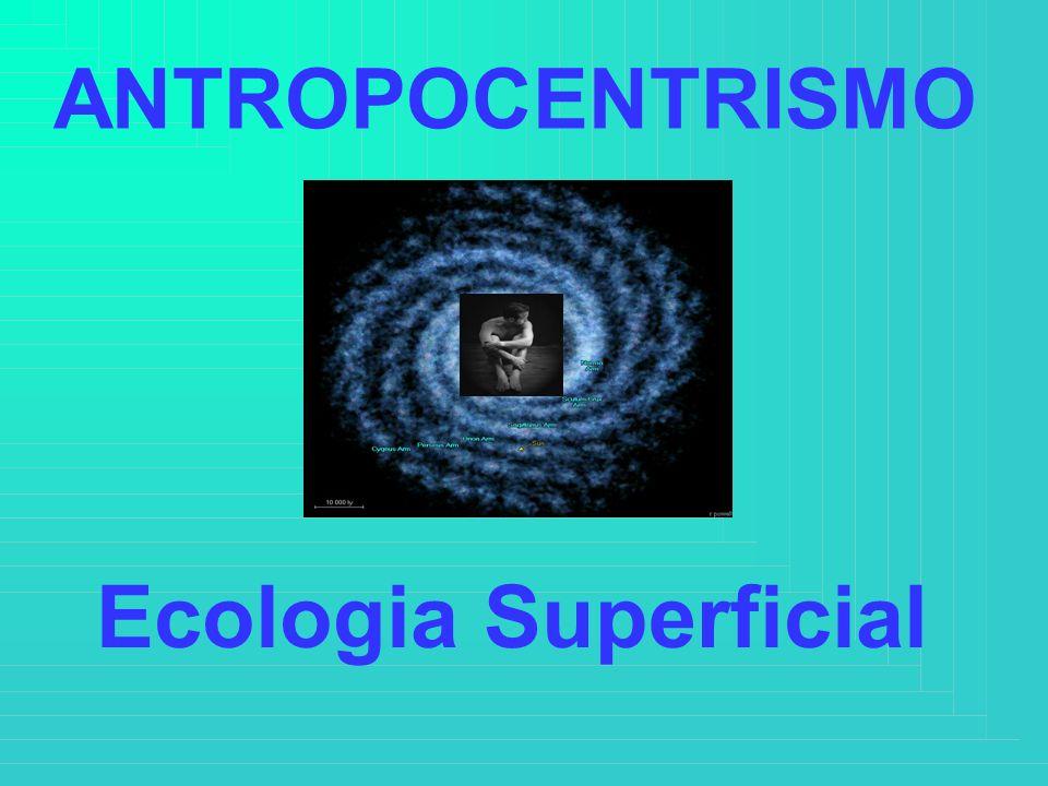 ANTROPOCENTRISMO Ecologia Superficial