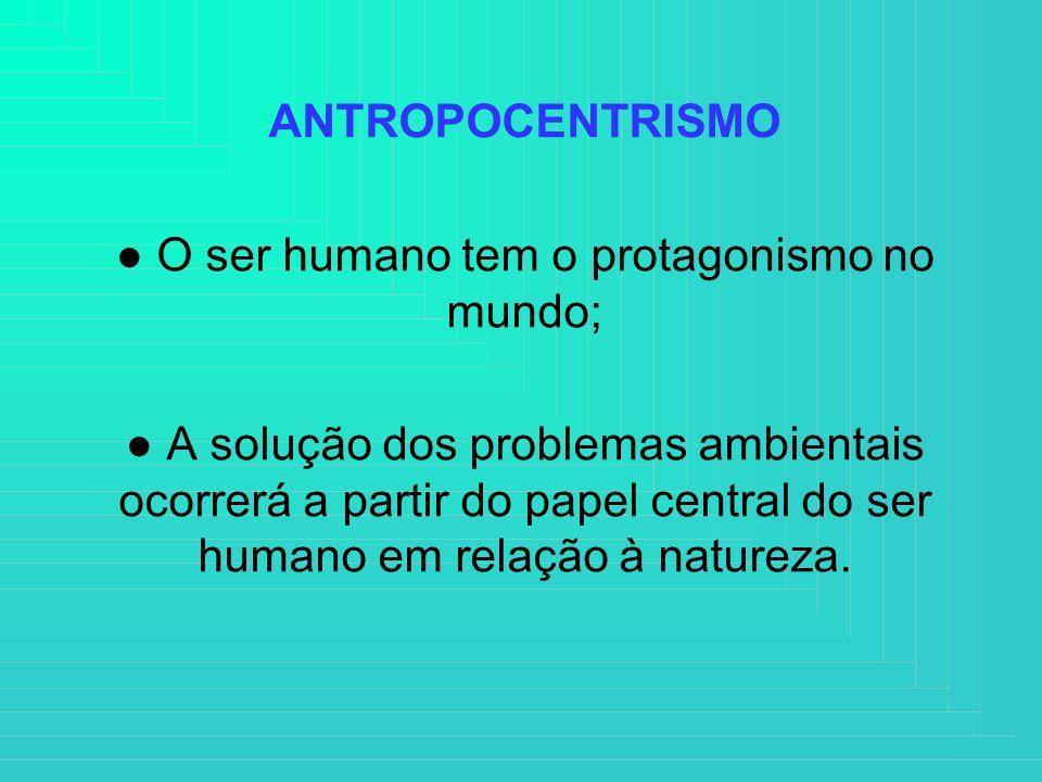 ● O ser humano tem o protagonismo no mundo;