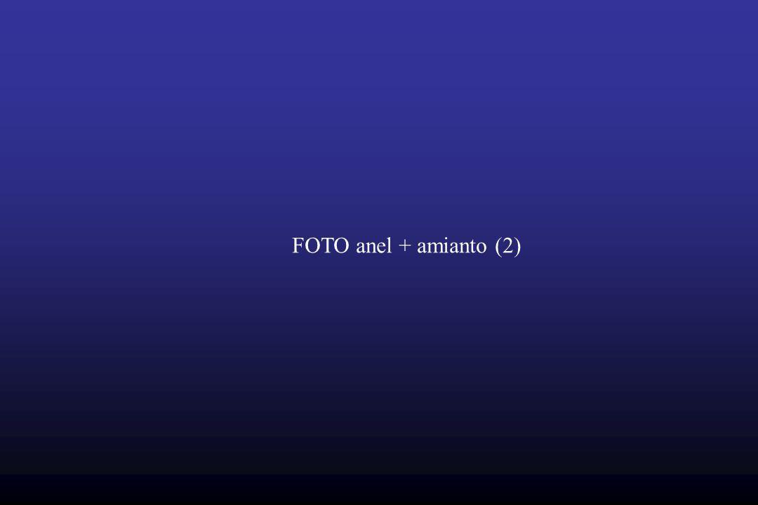 FOTO anel + amianto (2)