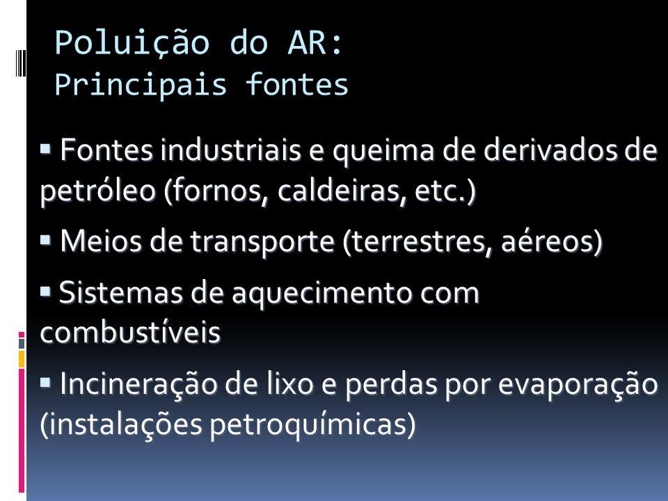 Poluição do AR: Principais fontes