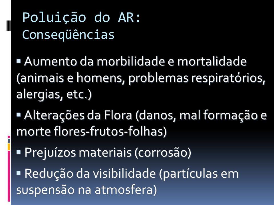 Poluição do AR: Conseqüências
