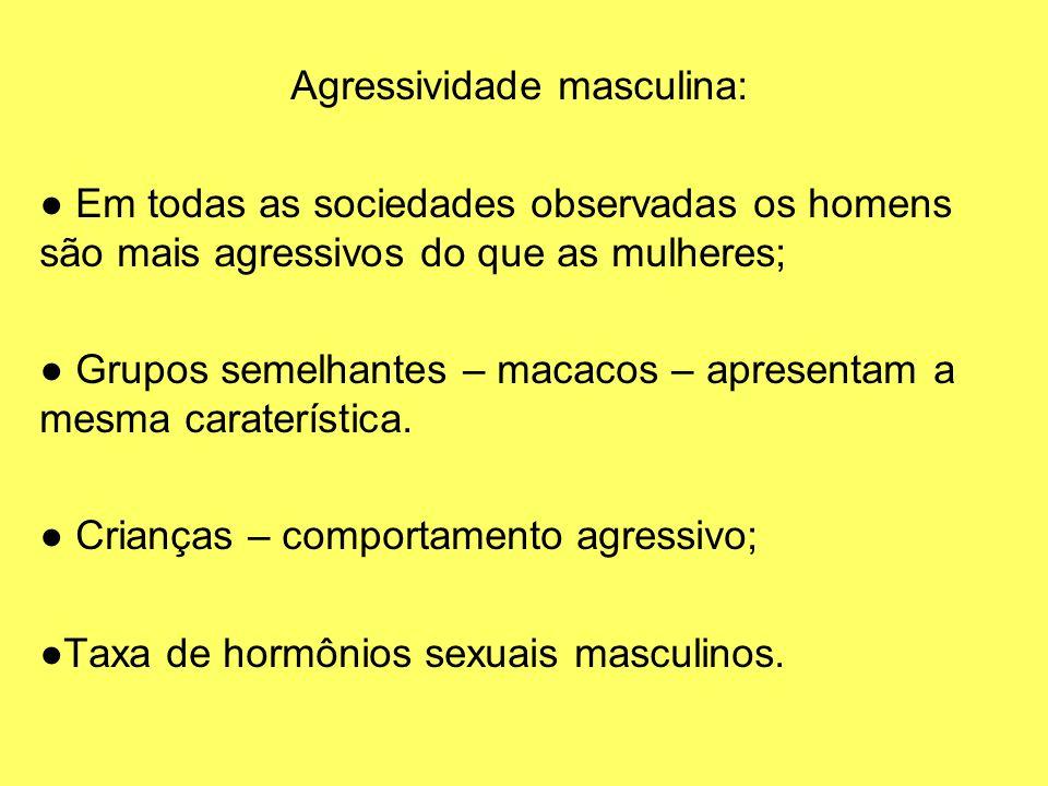 Agressividade masculina: