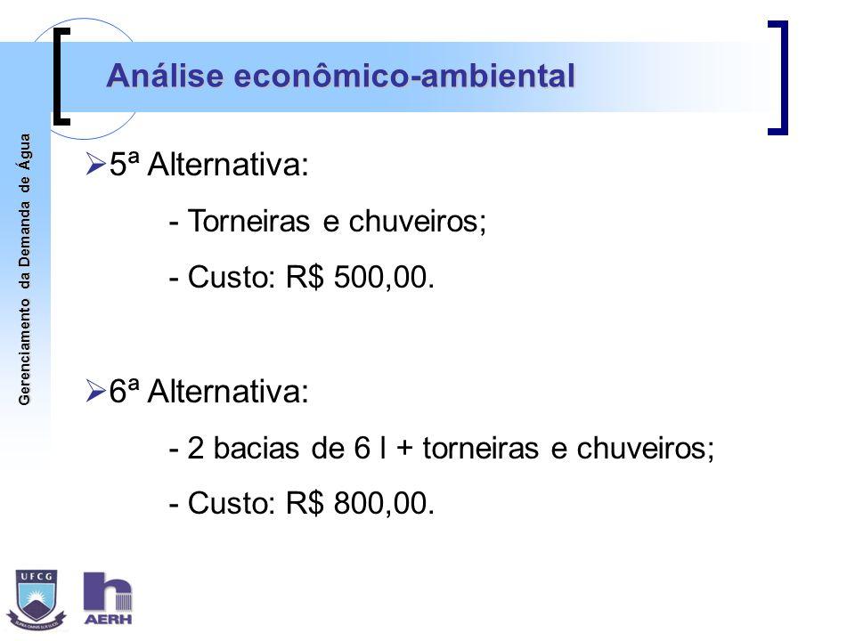 Análise econômico-ambiental