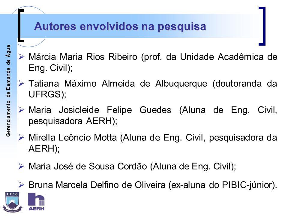 Autores envolvidos na pesquisa