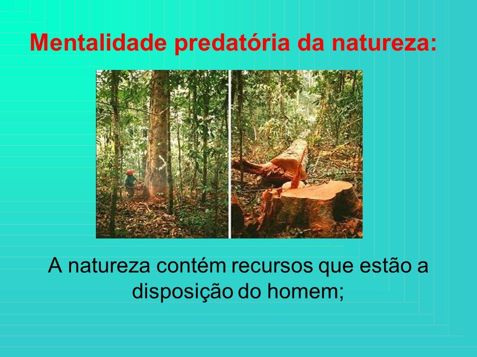 A natureza contém recursos que estão a disposição do homem;