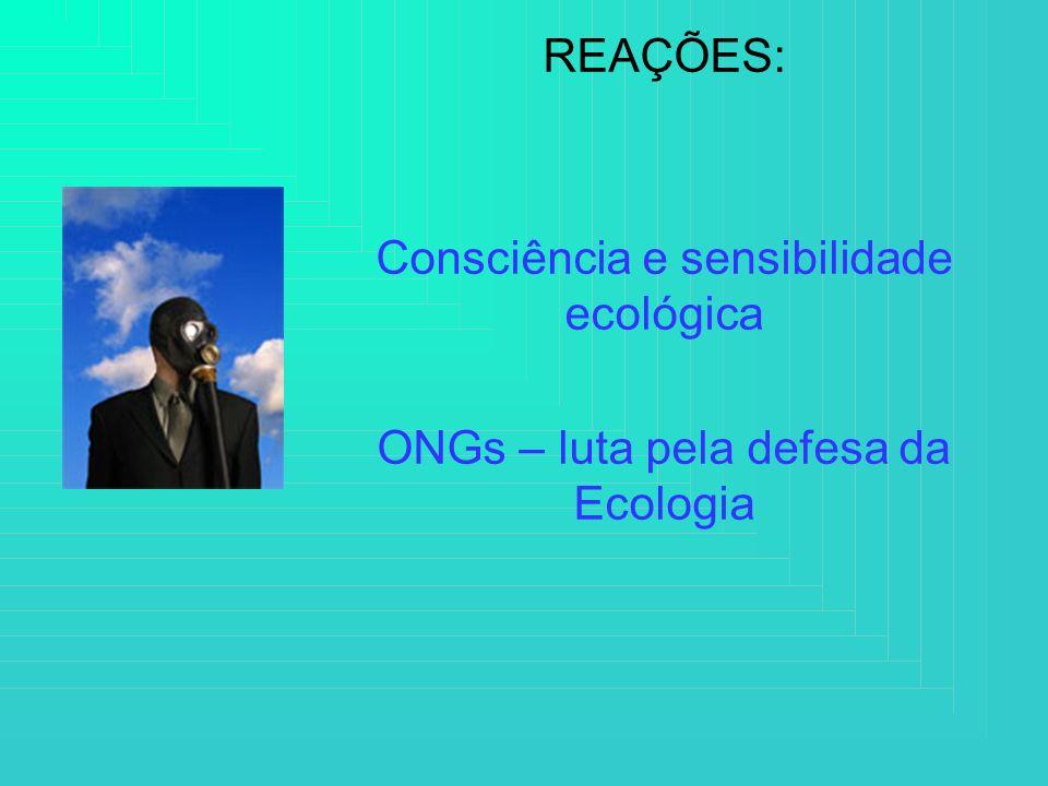 Consciência e sensibilidade ecológica
