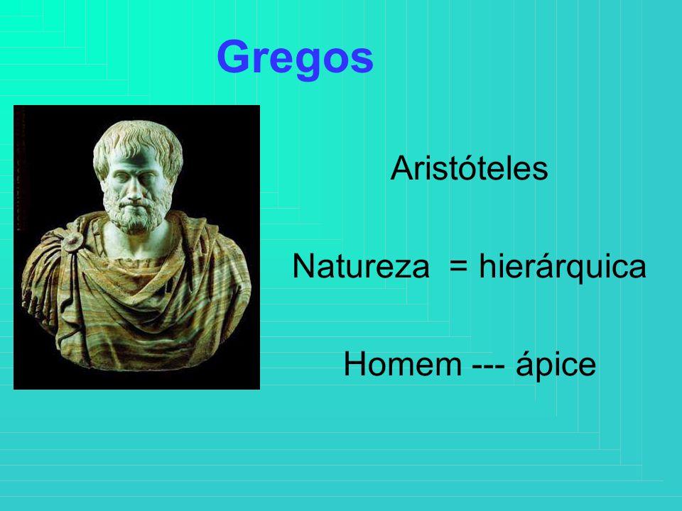 Aristóteles Natureza = hierárquica Homem --- ápice