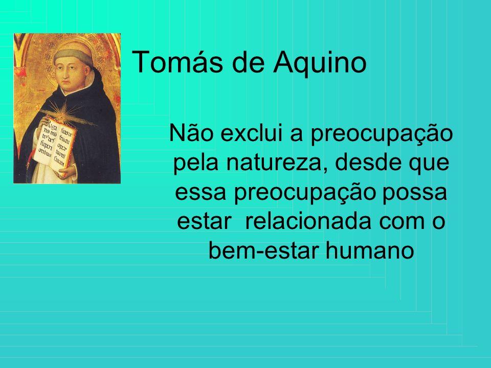 Tomás de Aquino Não exclui a preocupação pela natureza, desde que essa preocupação possa estar relacionada com o bem-estar humano.