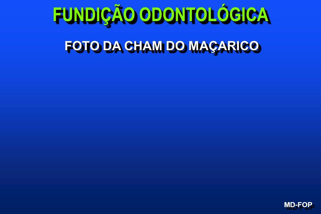 FUNDIÇÃO ODONTOLÓGICA FOTO DA CHAM DO MAÇARICO