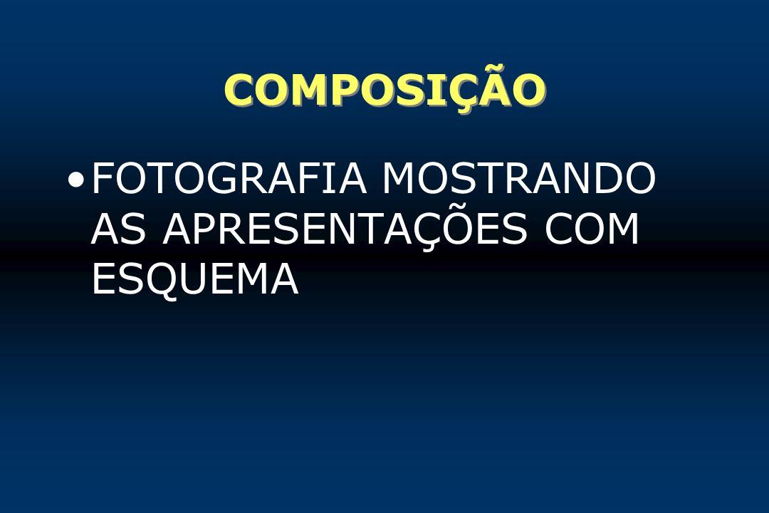 COMPOSIÇÃO FOTOGRAFIA MOSTRANDO AS APRESENTAÇÕES COM ESQUEMA