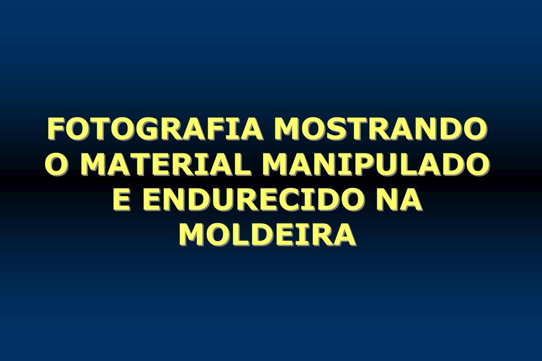 FOTOGRAFIA MOSTRANDO O MATERIAL MANIPULADO E ENDURECIDO NA MOLDEIRA