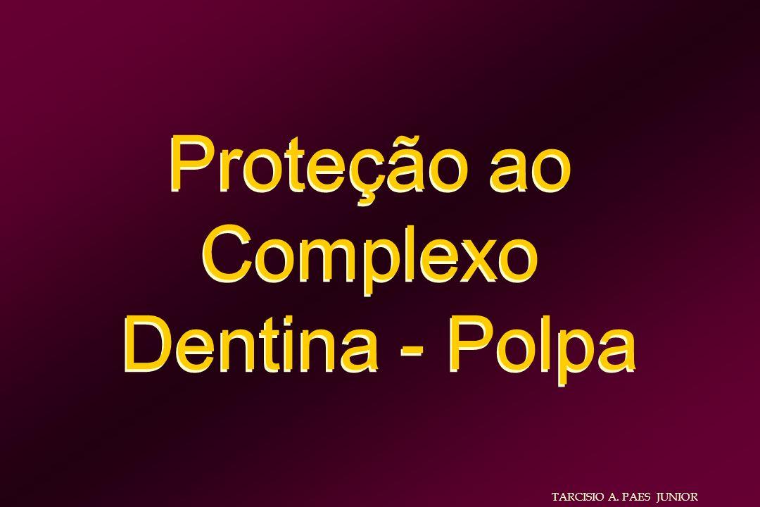 Proteção ao Complexo Dentina - Polpa TARCISIO A. PAES JUNIOR
