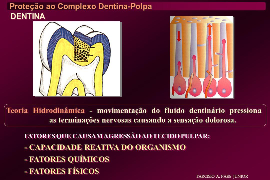 Proteção ao Complexo Dentina-Polpa DENTINA