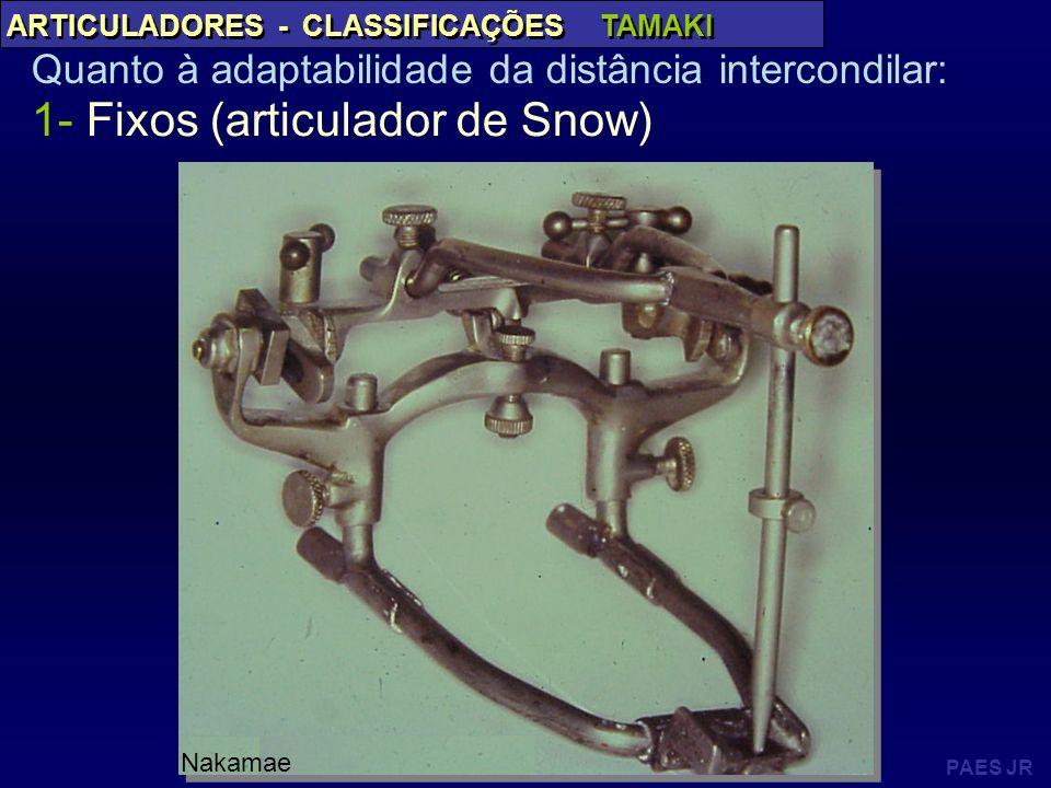 1- Fixos (articulador de Snow)