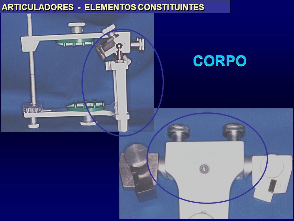 CORPO ARTICULADORES - ELEMENTOS CONSTITUINTES