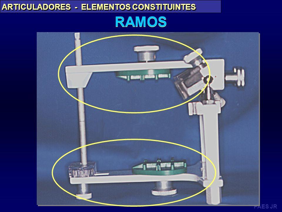 RAMOS ARTICULADORES - ELEMENTOS CONSTITUINTES