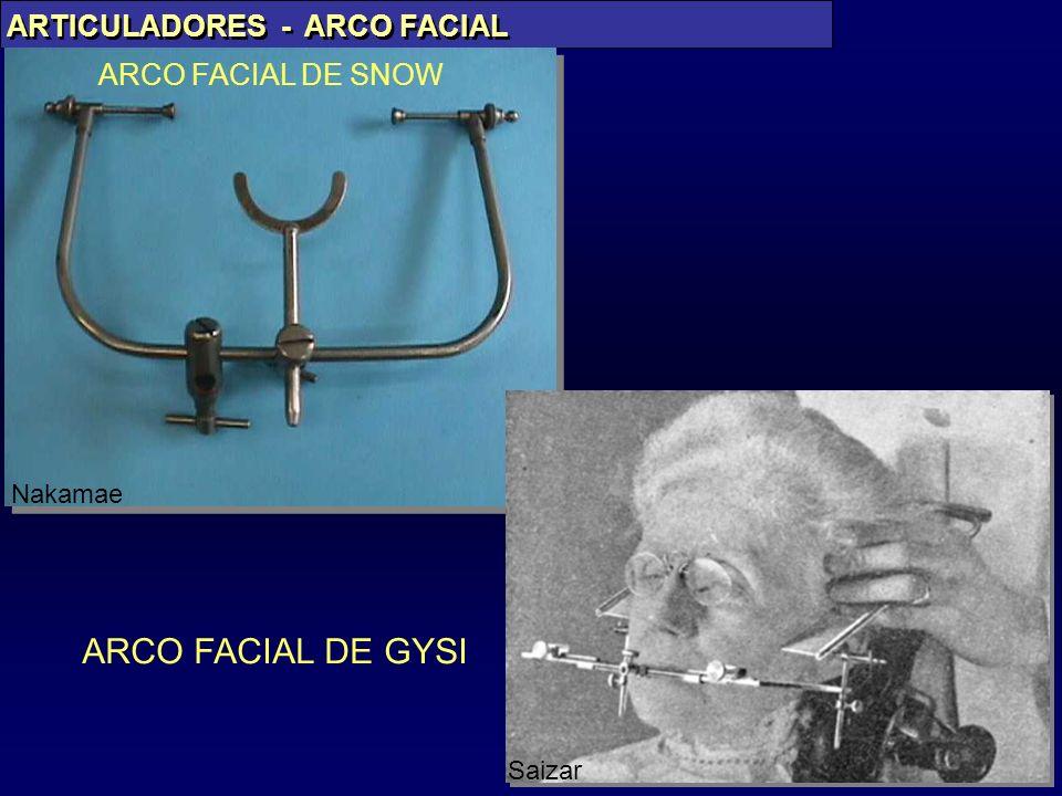 ARCO FACIAL DE GYSI ARTICULADORES - ARCO FACIAL ARCO FACIAL DE SNOW