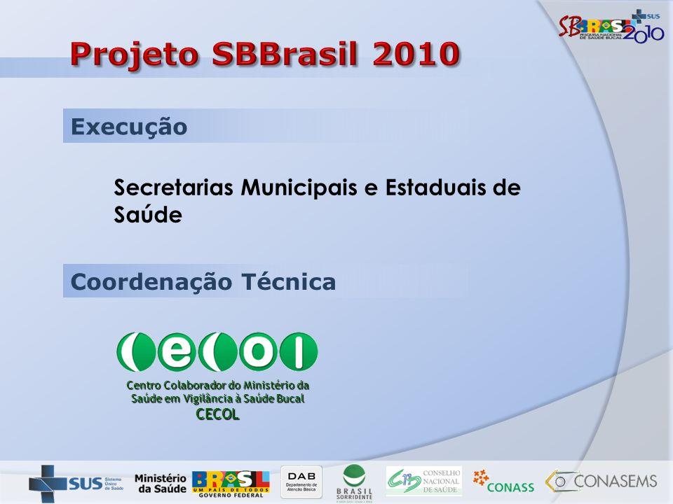 Projeto SBBrasil 2010 Execução