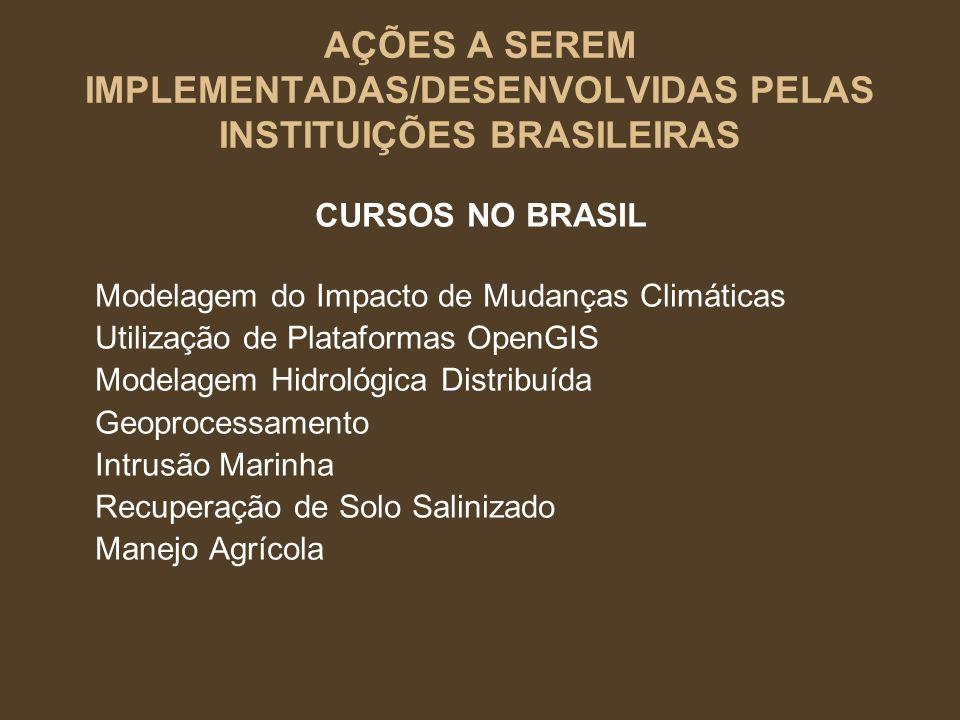 AÇÕES A SEREM IMPLEMENTADAS/DESENVOLVIDAS PELAS INSTITUIÇÕES BRASILEIRAS