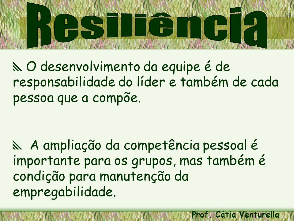 Resiliência O desenvolvimento da equipe é de responsabilidade do líder e também de cada pessoa que a compõe.