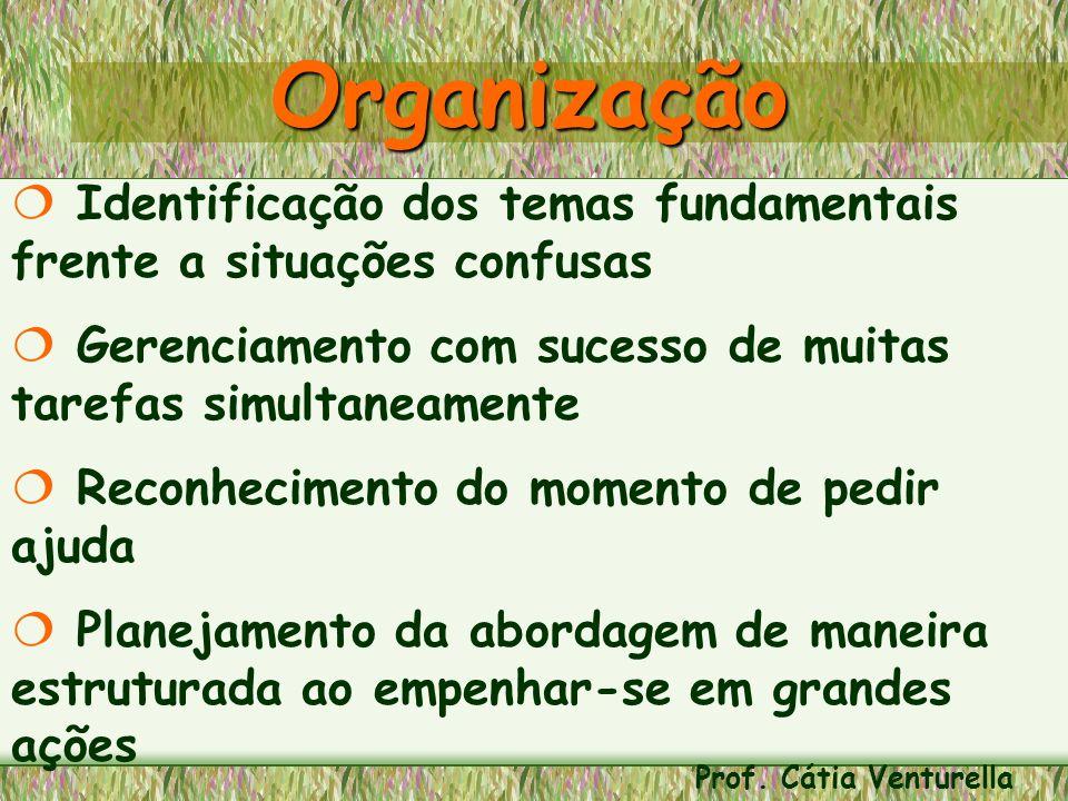 Organização Identificação dos temas fundamentais frente a situações confusas. Gerenciamento com sucesso de muitas tarefas simultaneamente.