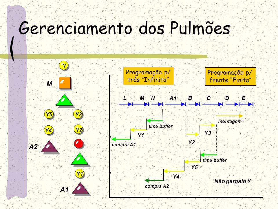 Gerenciamento dos Pulmões